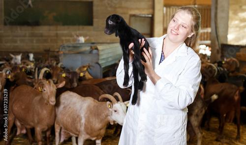 Fotografia Female breeder with goatlings