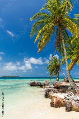 Photo San Blas island beach
