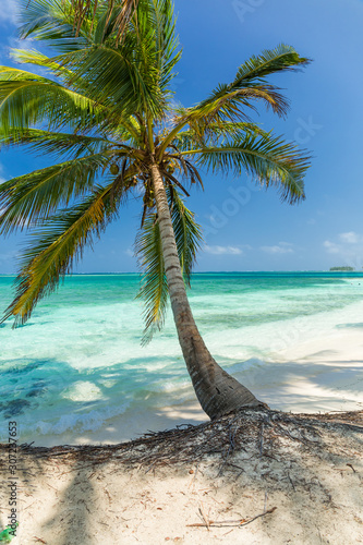 San Blas island beach Fototapet
