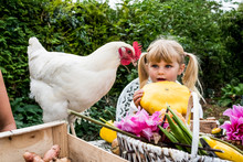 Blond Girl Holding Yellow Gourd And White Chicken In A Garden.
