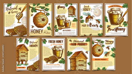 Photo Bee Insect, Wild And Wooden Beehive Posters Vector