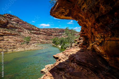Valokuvatapetti The gorgeous loop trail bushwalking along the Murchison River in Kalbarri Nation