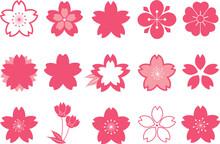 桜:花 紋 桜の花 ...
