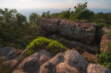 The Knob Stone Ground At Laan Hin Pum Viewpoint Phu Hin Rong Kla National Park,Thailand