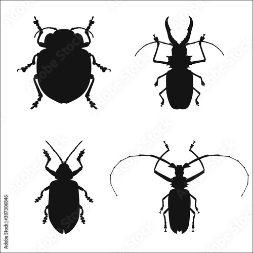 Tela  Collection of silhouettes of bug isolated on white background