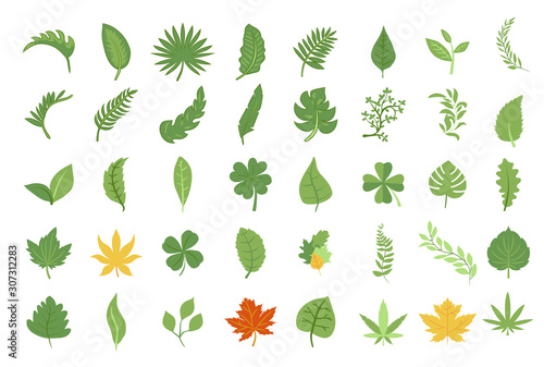 leaf vector set collection graphic design Canvas-taulu