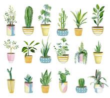 Watercolor Set Of Home Plants ...