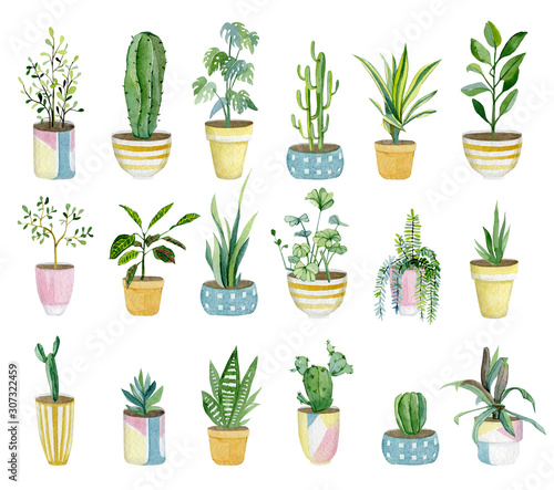Obraz Watercolor set of home plants in flower pots. Hand drawn watercolor for banner, print, home or garden decoration..jpg - fototapety do salonu