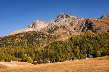 Autumn And Nature On The Shores Of Lake Silvaplana, Among The Swiss Alps - October 2019.