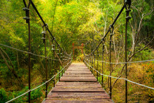 Cable Wire Bridge (with Broken Wooden Floor) Is Crossing Over The Abyss On Trekking Route. Selective Focus At The Middle Length Of The Wooden Walkway. Beautiful In The Autumn Photo.