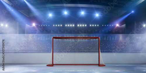 Ice hockey stadium. Wallpaper Mural