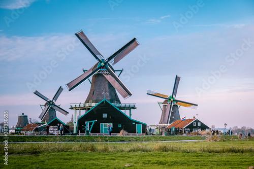 Zaanse Schans windmill village during Autumn with mist fog weather in the Nether Wallpaper Mural