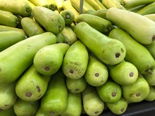 Close Up Shot Of Long Green Gourds At A Fresh Market Section