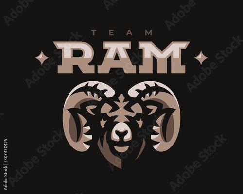 Fotografie, Obraz Ram modern mascot logo