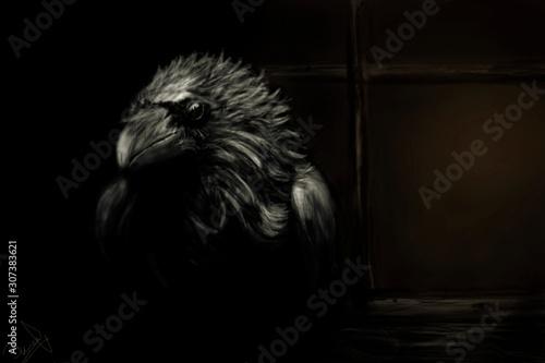 Un cuervo te mira Fototapet