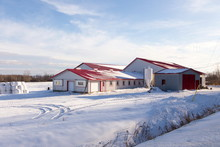 Red And White Farm Buildings A...
