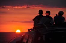 Sunset Showtime