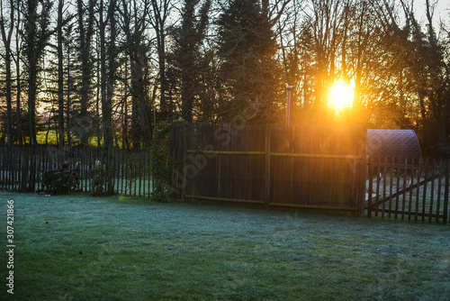 Obraz Sunrise on backyard wood - fototapety do salonu