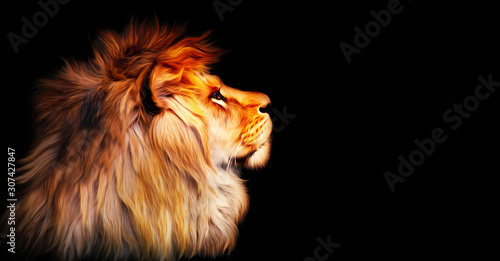 African lion profile portrait isolated on black background, spectacular dramatic king of animals, proud dreaming fantasy Panthera leo looking forward Wallpaper Mural