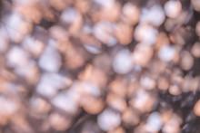 Shiny Blurred Defocused Lilac ...