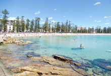 Shelly Beach And Manly Beach, ...