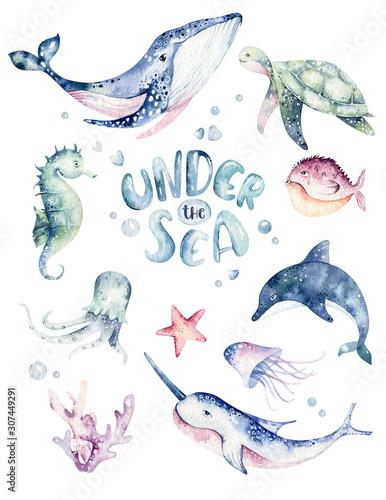 Fototapeta Set of sea animals poster. Blue watercolor ocean fish, turtle, whale and coral. Shell aquarium background. Nautical wildlife dolphin marine illustration, jellyfish, starfish obraz
