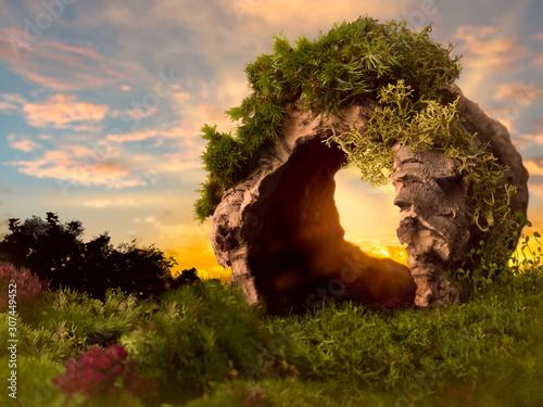Obraz na płótnie Sunset through hollow tree trunk