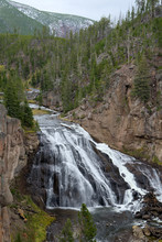 View Of Gibbon Falls In Yellow...