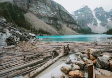 Logs At Base Of Moraine Lake S...