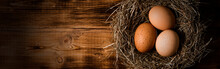 Chicken Eggs In Wicker Nests In Chicken Coop Top View. Natural Organic Eggs In The Hay. Fresh Chicken Eggs.