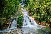 Small Waterfall In The Dark Forest. Waterfalls And Vegetation Inside The Bwindi Impenetrable Forest