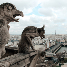 Notre Dame Cathedral Gargoyles Looking Over Paris, France.
