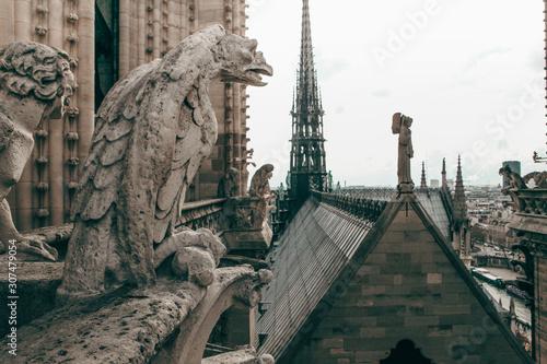 Foto op Aluminium Historisch mon. Notre Dame Cathedral Gargoyle And Steeple In Paris France