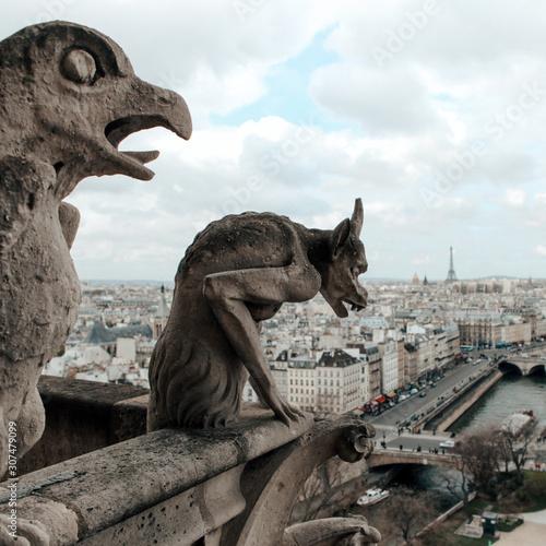 Foto op Aluminium Historisch mon. Notre Dame Cathedral Gargoyles Looking Over Paris, France.