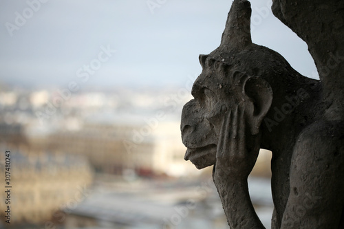 Foto op Aluminium Historisch mon. A Notre Dame Cathedral Gargoyle Looking Over Paris France