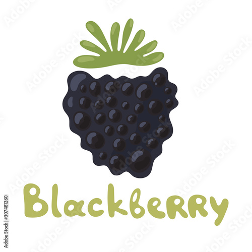 Dewberries or blackberries on white background Fototapeta