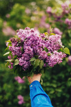 Woman Holding Lilac Bouquet
