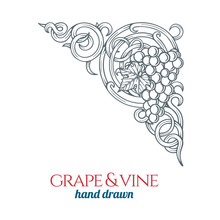 Grape And Vine.  Hand Drawn Grape Bunch Engraving Style Illustration. Bunch Of Grapes Sketch Drawing Corner Ornament. Part Of Set.