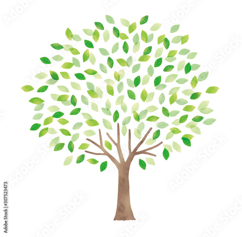 Fotomural さわやかな水彩の大木