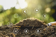 Dung Or Manure With Technolog...