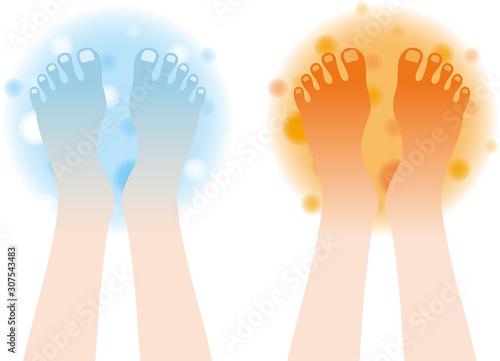 Tablou Canvas 凍える足の甲 あたたかな足の甲 セット 輪郭なし