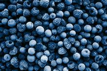 Frozen Berries Toned In Classi...