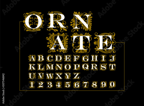 ornate gold vector set of letters in the old vintage style. Fototapete