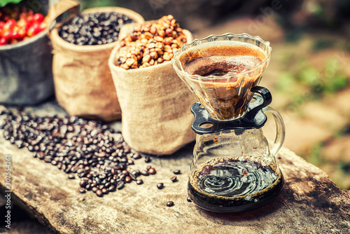 Obraz Robusta, Arabica, coffee berries, coffee beans. Top view with copy space for your text - fototapety do salonu