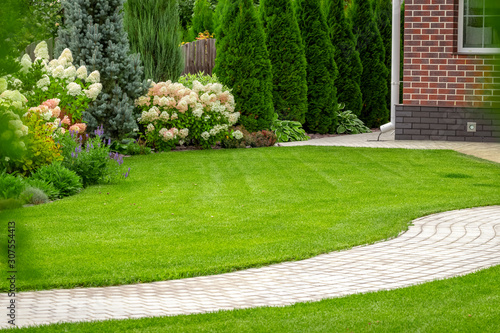 Obraz Freshly cut grass in the backyard of a private house. - fototapety do salonu