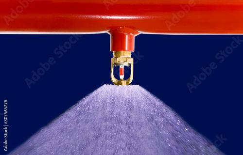 Obraz Sprinkleranlage - fototapety do salonu