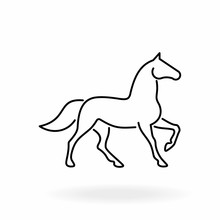 Horse Outline Icon. Equine Lin...