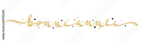 Calligraphie vecteur BONNE ANNEE avec étoiles Canvas Print