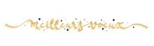 Bannière Calligraphique Vecteur « MEILLEURS VOEUX »