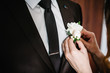 canvas print picture - Bride's hands puts the groom on jacket a wedding boutonniere. Wedding concept.